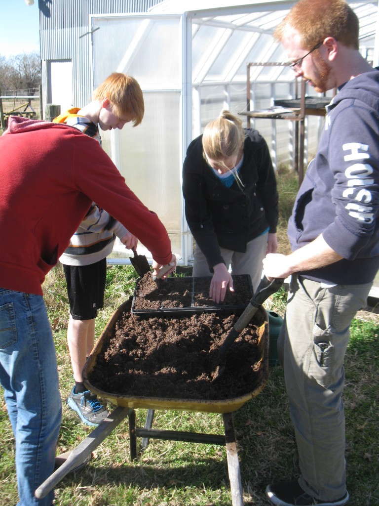 Filling seed trays with our custom starter soil mix